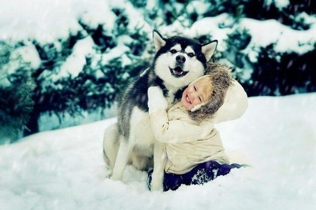 husky-and-child